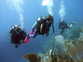 Scuba diving and snorkeling!