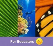National Geographic Grade 1 Science FLORIDA