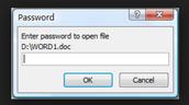 Password Protect Word Docs
