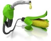 Where biofuel comes from