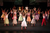 Latin rhythms electrify the air in CUBA VIBRA!