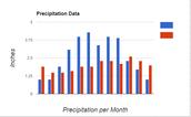 Graph of  average precipitation