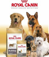 Royal Canin German Sheperd ... PREZZO PAZZO