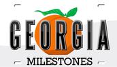 GEORGIA MILESTONE (Check with your facilitator)