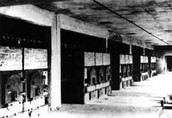 Gas Chambers in Auschwitz