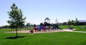 Our Park Days Are This Thursday And Friday (not combined)
