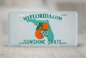 Why I Chose Florida