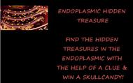 ENDOPLASMIC HIDDEN TREASURY