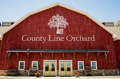 Field Trip to County Line Orchard