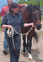 Grazie al meraviglioso contatto con i cavalli,
