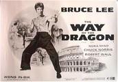 The Way of Dragon