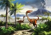 Dinasour Extinction