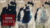 Araali meri 1970- 1990- 2014