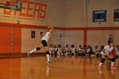 2014 Volleyball