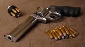 The 500 S&W Magnum