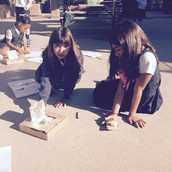 Solar Oven Baking Experiment...