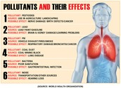 Causes and the effects