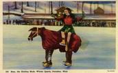 Bozo the Skating Mule