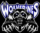 Team Wolverines Roster