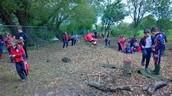 Environmental Learning Grades 4-8