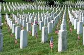 Arlington Natinol Cemetery
