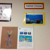 Habitat Choices