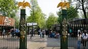 Artis Royal Zoo