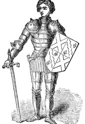 3.This is a picture of a knight!