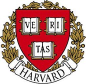 Why is Harvard University now working with network marketers?