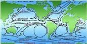 Northern Hemisphere Currents