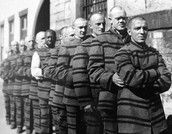 People Lining Up To Go To Jail