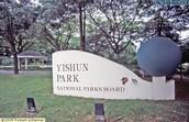 Yishun Park
