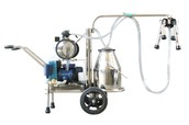 Cow Milking Equipment