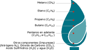 COMPOSICIÓN DEL GAS NATURAL