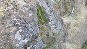 this a rock on mt. boucherie!