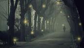 Di sera