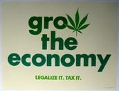 Colorado Decision on Legalizing Marijuana