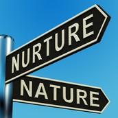 Stop 2: The Nature vs Nurture Debate