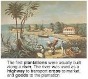 What are the plantation colonies?