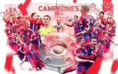 Bayern Munich 25e Bundesliga Champion