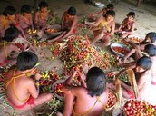 Food Gathering !