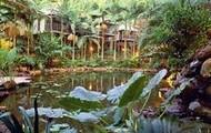 Daintreee Rainforest National Park