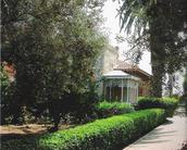 בית אהרנסון