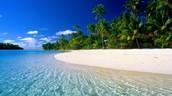 A brief description of the paradise