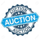 Auction 2016