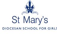 St Mary's DSG