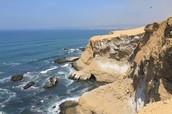 Puedes nadar en la costa de Perú. El agua del mar es caliente todos los días.