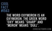 Oxymoron Fun Fact