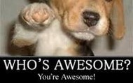 You're Awesome!!