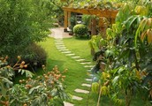 Interesting Landscaping Techniques To Make Your Home Stand Out